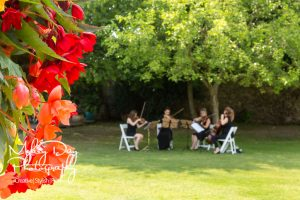 Wedding-Musicians-in-Kent-and-East-Sussex-Entertainment-Article-12-300x200 Wedding Entertainment Ideas