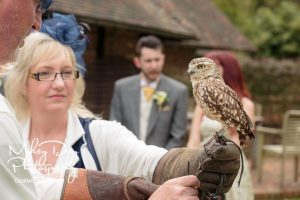 Wedding-Owls-and-Falconry-in-Kent-and-East-Sussex-Entertainment-Article-3-300x200 Wedding Entertainment Ideas